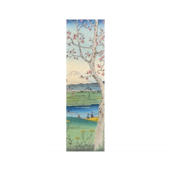 Bookmark Musashi Koshigaya
