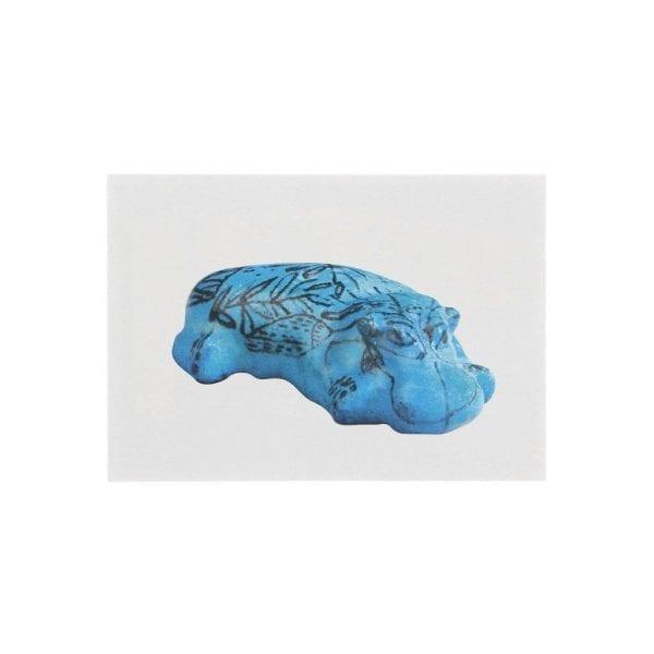 Postcard Hippopotamus