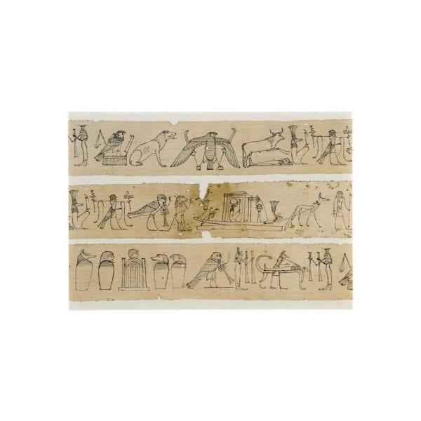 Postcard Mummy bandage